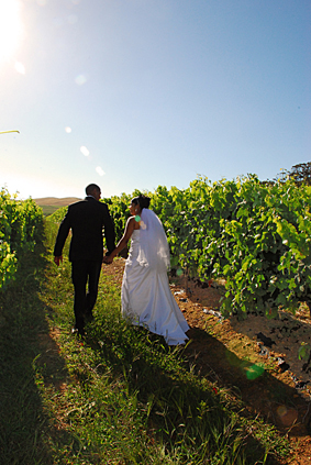DK Photography dsc_1434 Azelia & Shaun's Wedding in Bloemendal, Durbanville  Cape Town Wedding photographer